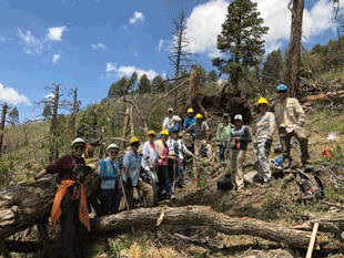 Volunteer Trail Crew Builds Capacity for Community Wilderness Stewardship
