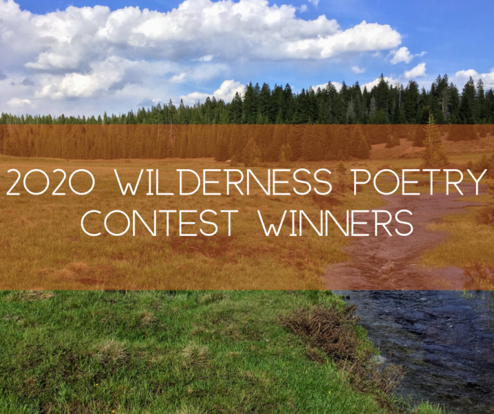 2020 Wilderness Poetry Contest: the cliff, by Tony Reevy