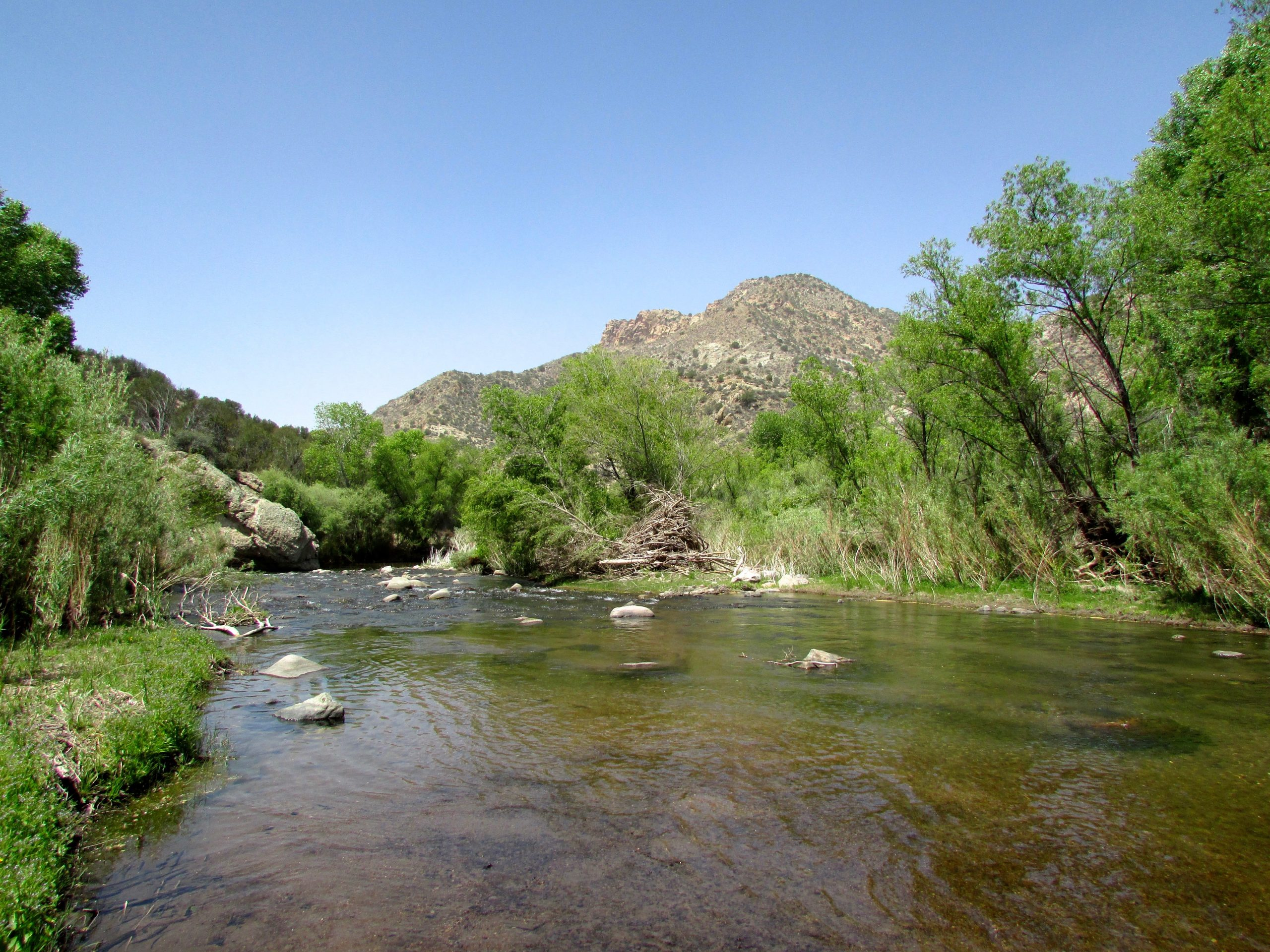 Santa Fe New Mexican: 'Wild' designation will protect the Gila