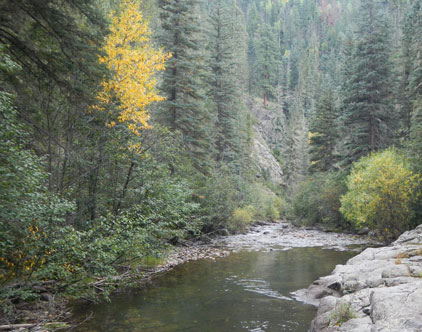 Conservation, Civic Organizations File Amicus Brief on Stream Access Rule to State Supreme Court