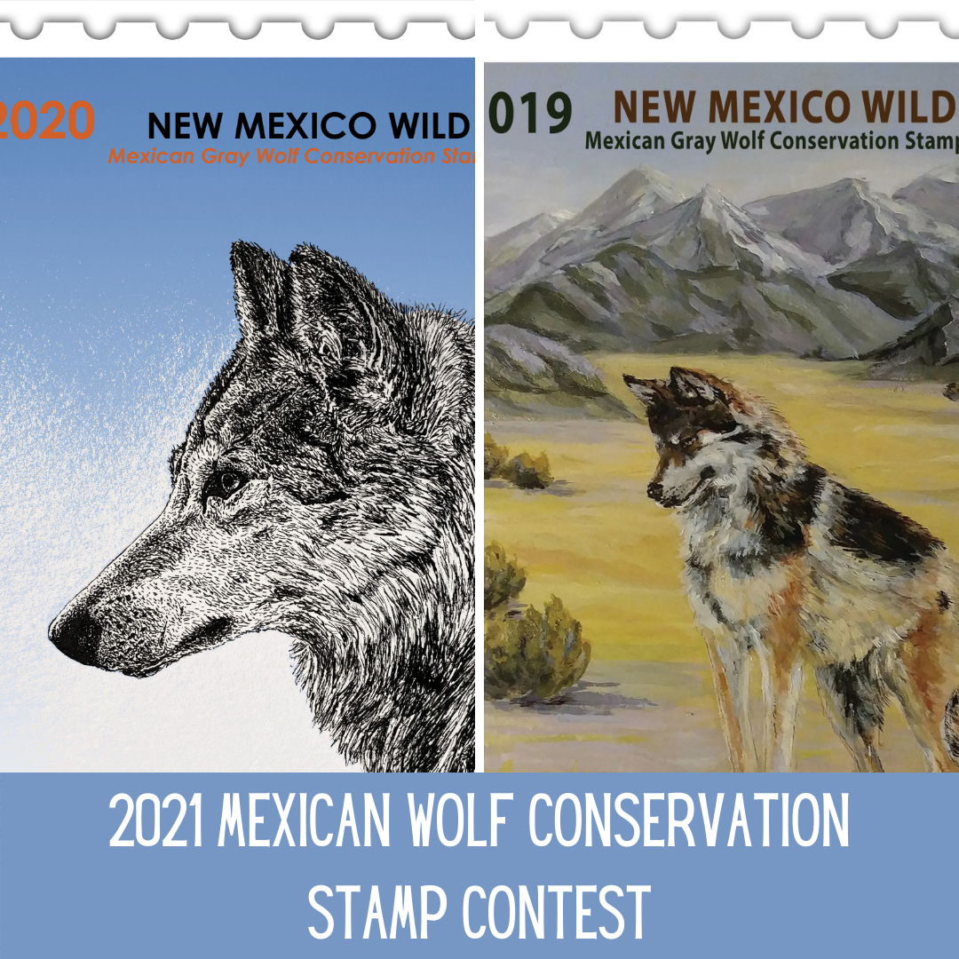 Calling All Artists: Enter the 2021 Wolf Stamp Contest