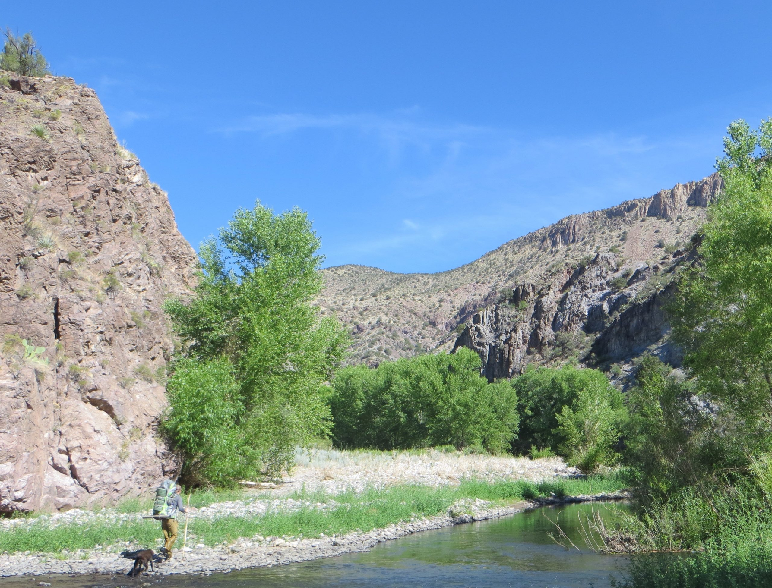 New Study Finds Wild Gila and San Francisco Rivers Greatly Contribute to Local Economy