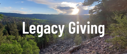 Legacy Giving/Bequest