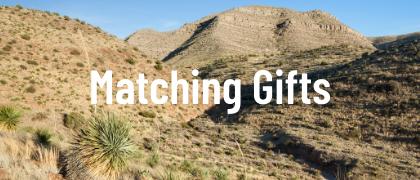 Matching Gift Programs