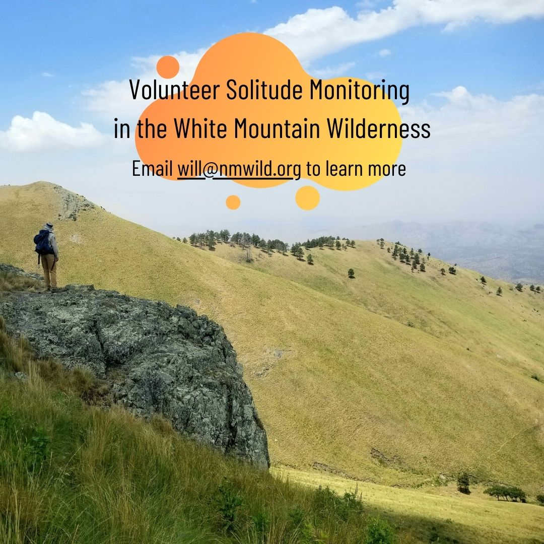 Solitude Monitoring in White Mountain Wilderness
