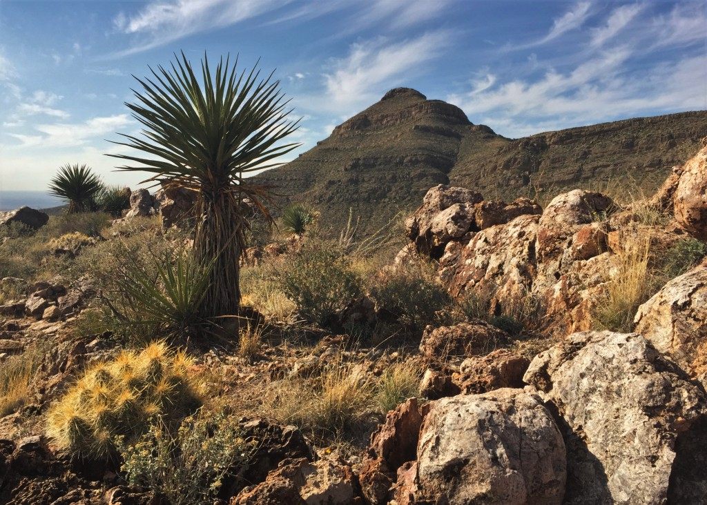 New Mexico's outdoor recreation industry could be key to recovery from COVID-19