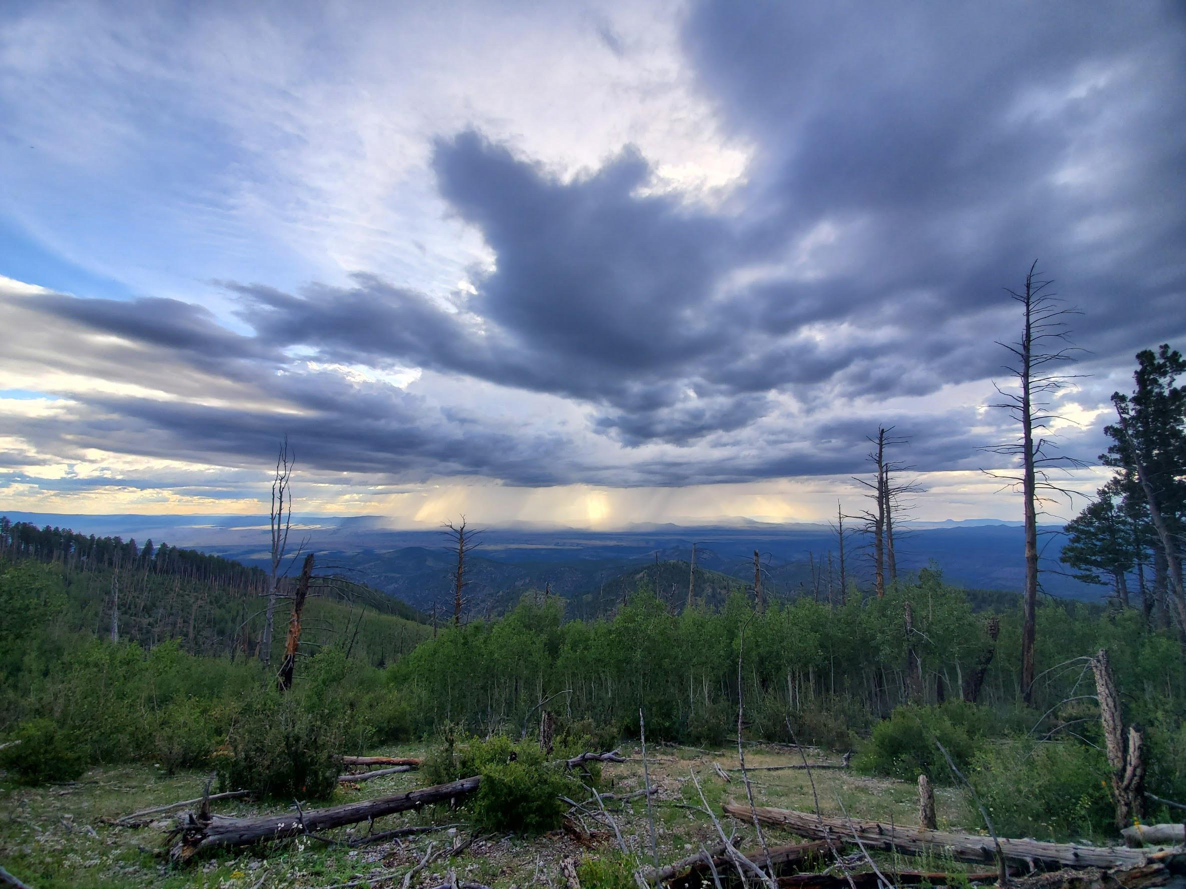 Solitude Monitoring in Apache Kid, Withington, and Manzano Mountain Wilderness Areas