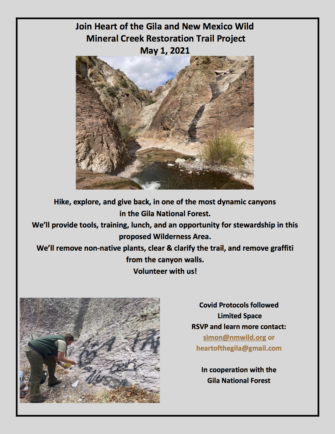 Mineral Creek Trail Restoration Project