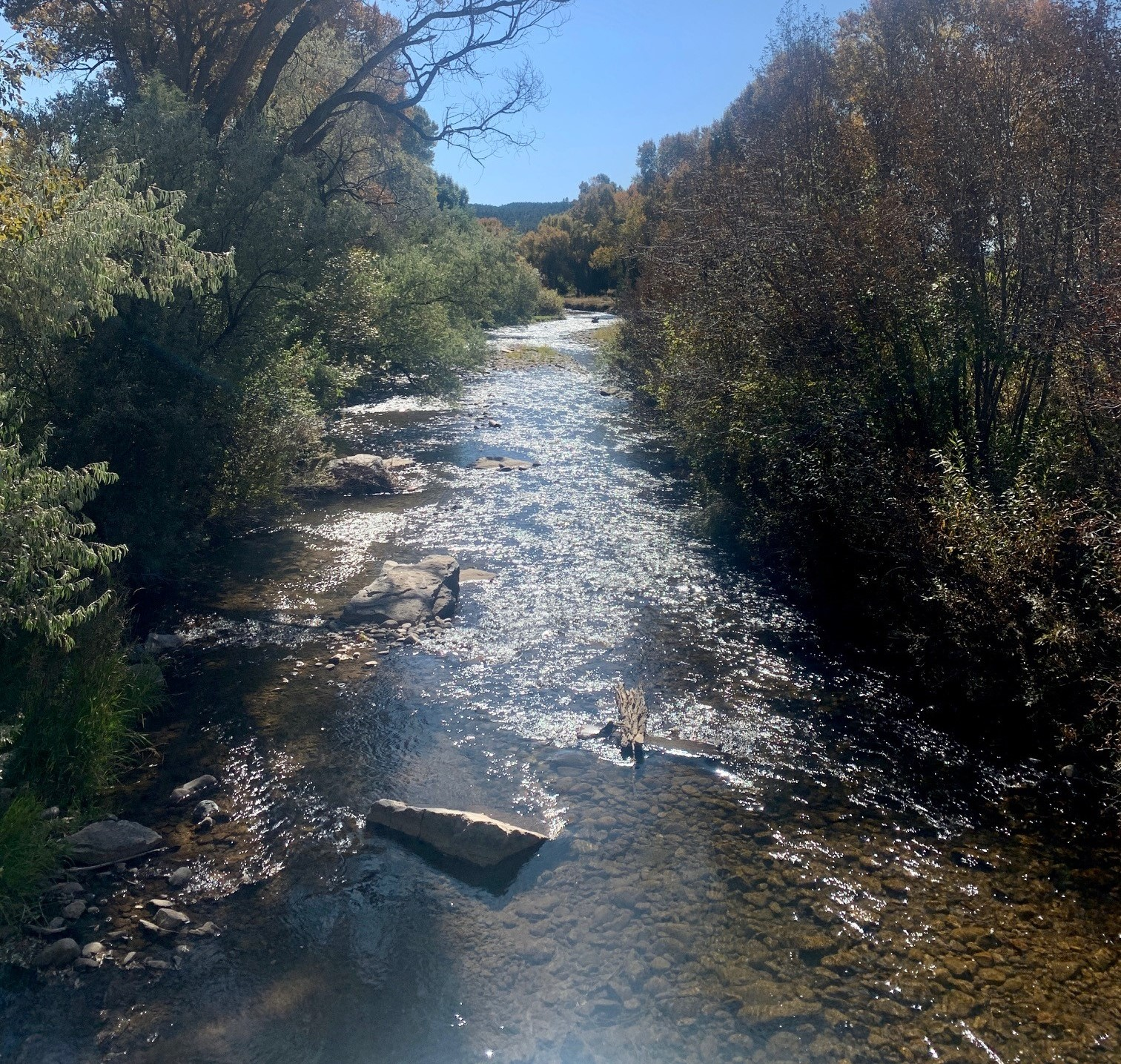 Protecting the Pecos River